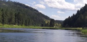 Rivier in the Black Hills