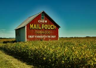 Mail Pouch Tobacco Barn/ Indiana